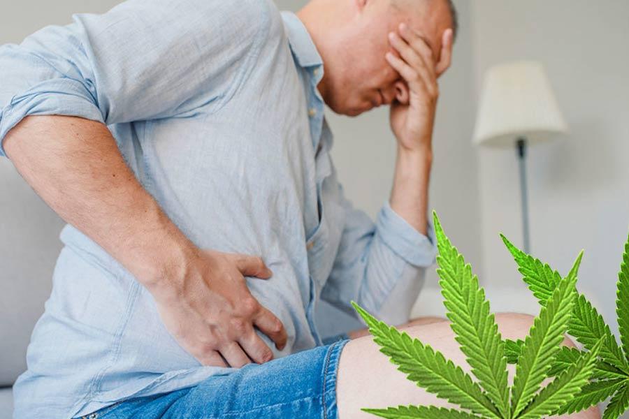 Konopie wrzody żołądka i dwunastnicy